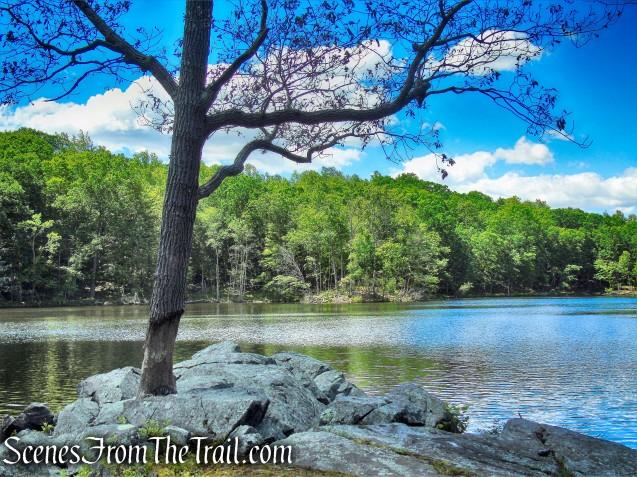 Blue Lake - Salt Hill State Forest