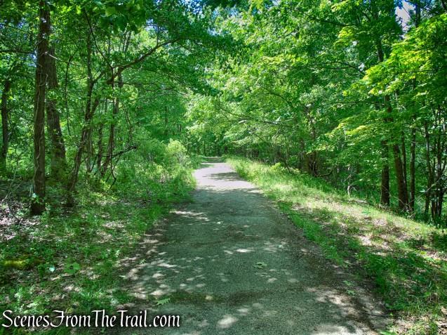asphalt road - Salt Hill State Forest