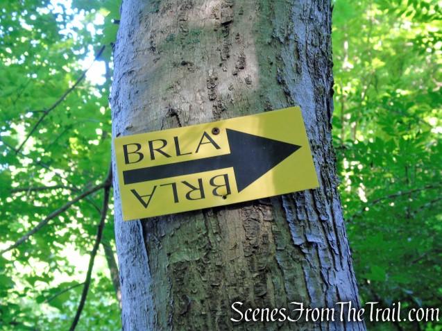 BRLA horse trail