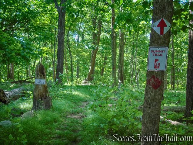 Summit Trail - St. Matthew's Church Woodlands