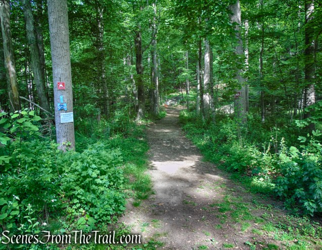 start of Blue Trail - Trailhead - Leon Levy Preserve