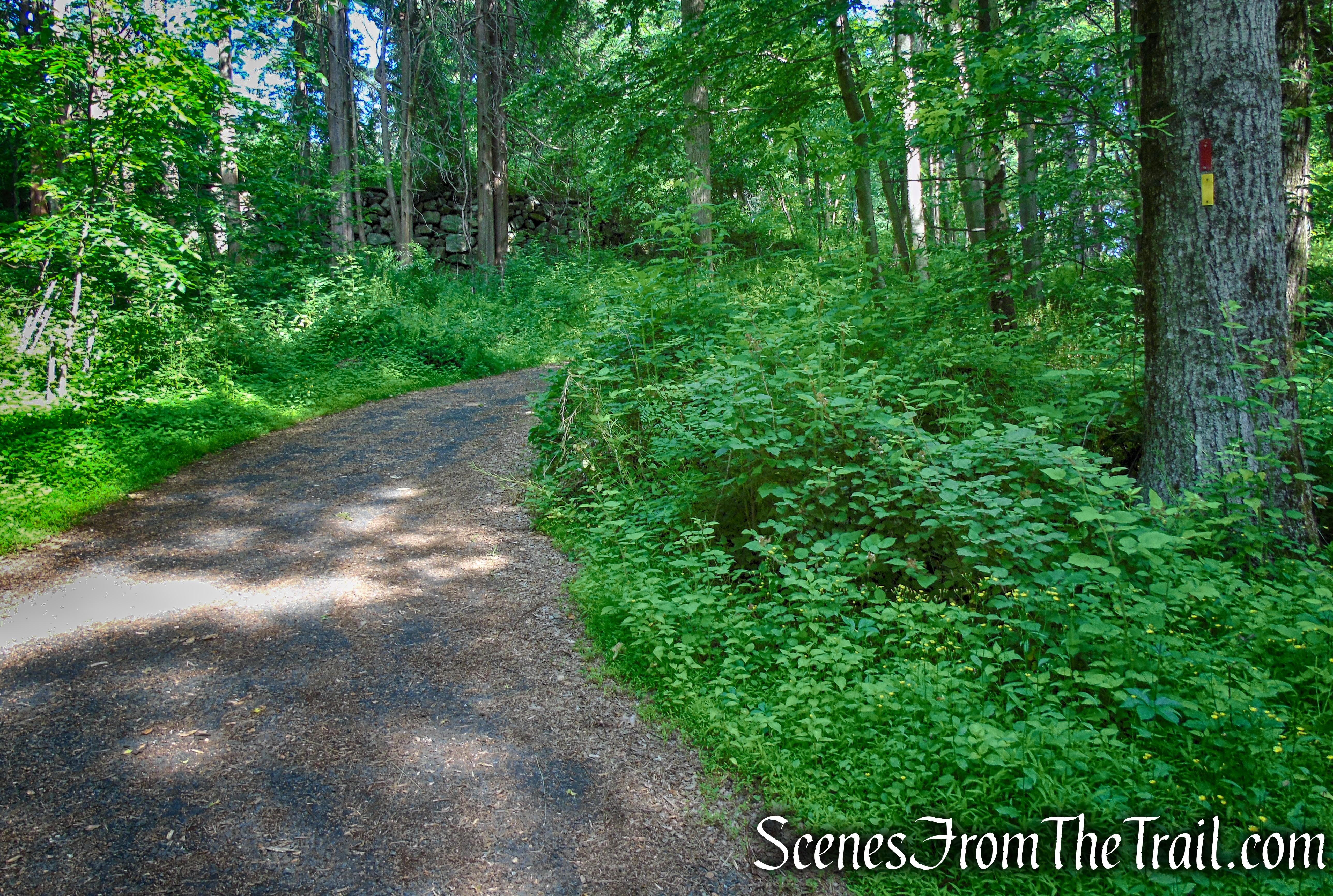 Yellow Trail - Leon Levy Preserve