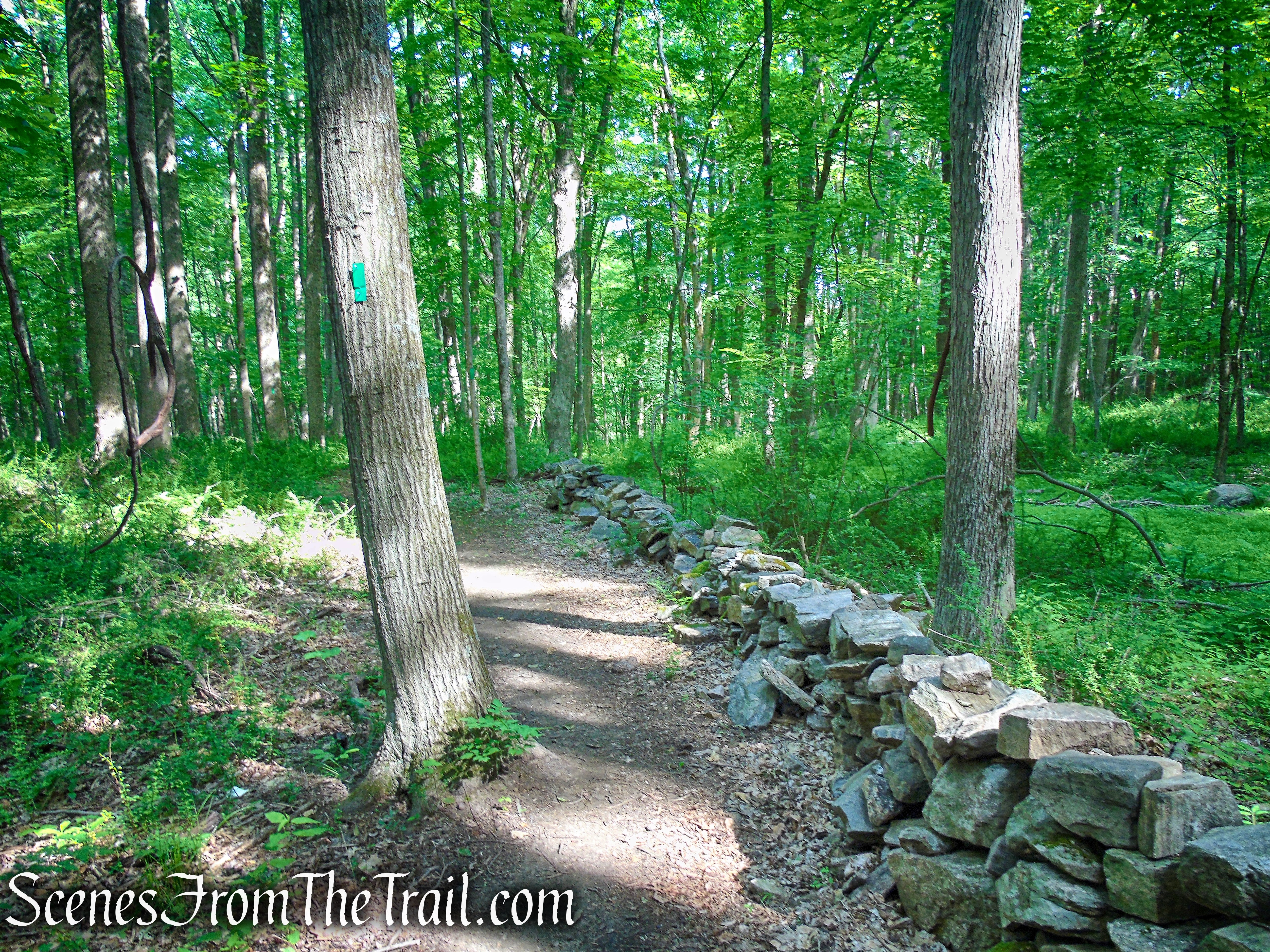 Green Trail - Leon Levy Preserve