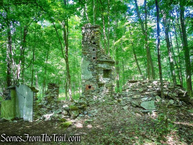 Cottage ruins - Leon Levy Preserve