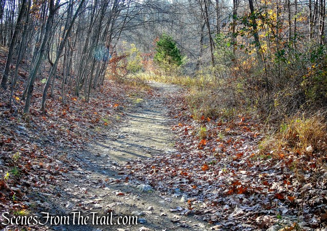 Blue Trail - Cascade Lake Park