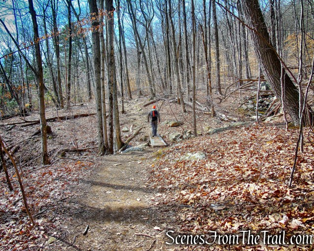 Yellow Trail – Sleeping Giant State Park