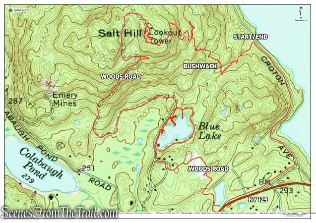 Salt Hill State Forest