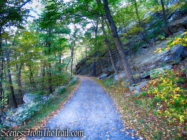 Overcliff Road - Mohonk Preserve