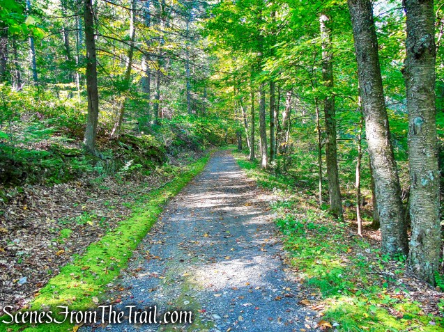 Laurel Ledge Road - Mohonk Preserve