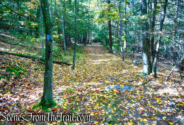 Old Minnewaska Trail - Mohonk Preserve