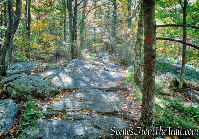 Shongum Path - Mohonk Preserve