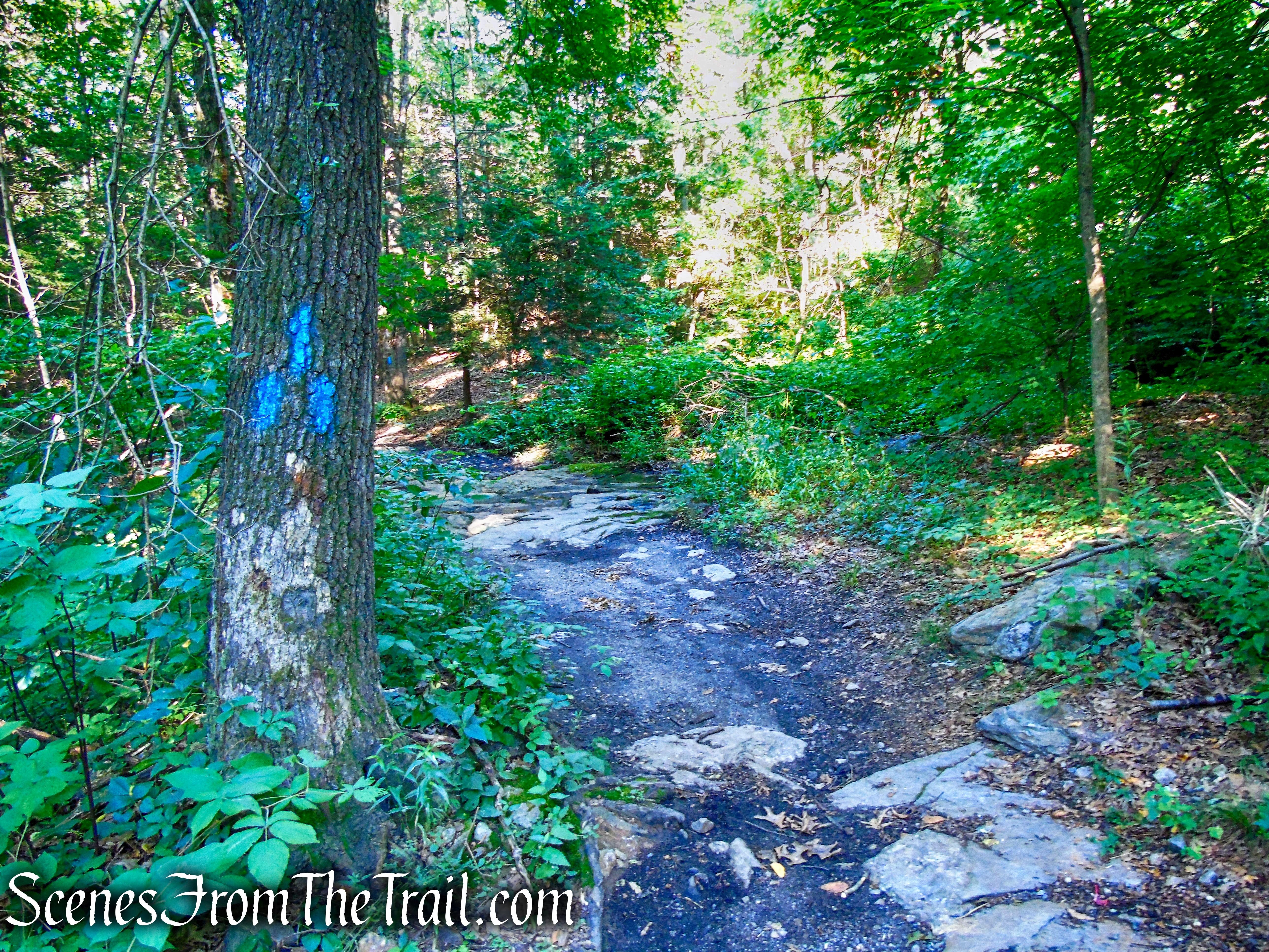 Blue Trail - Little-Laurel Lime Ridge Park