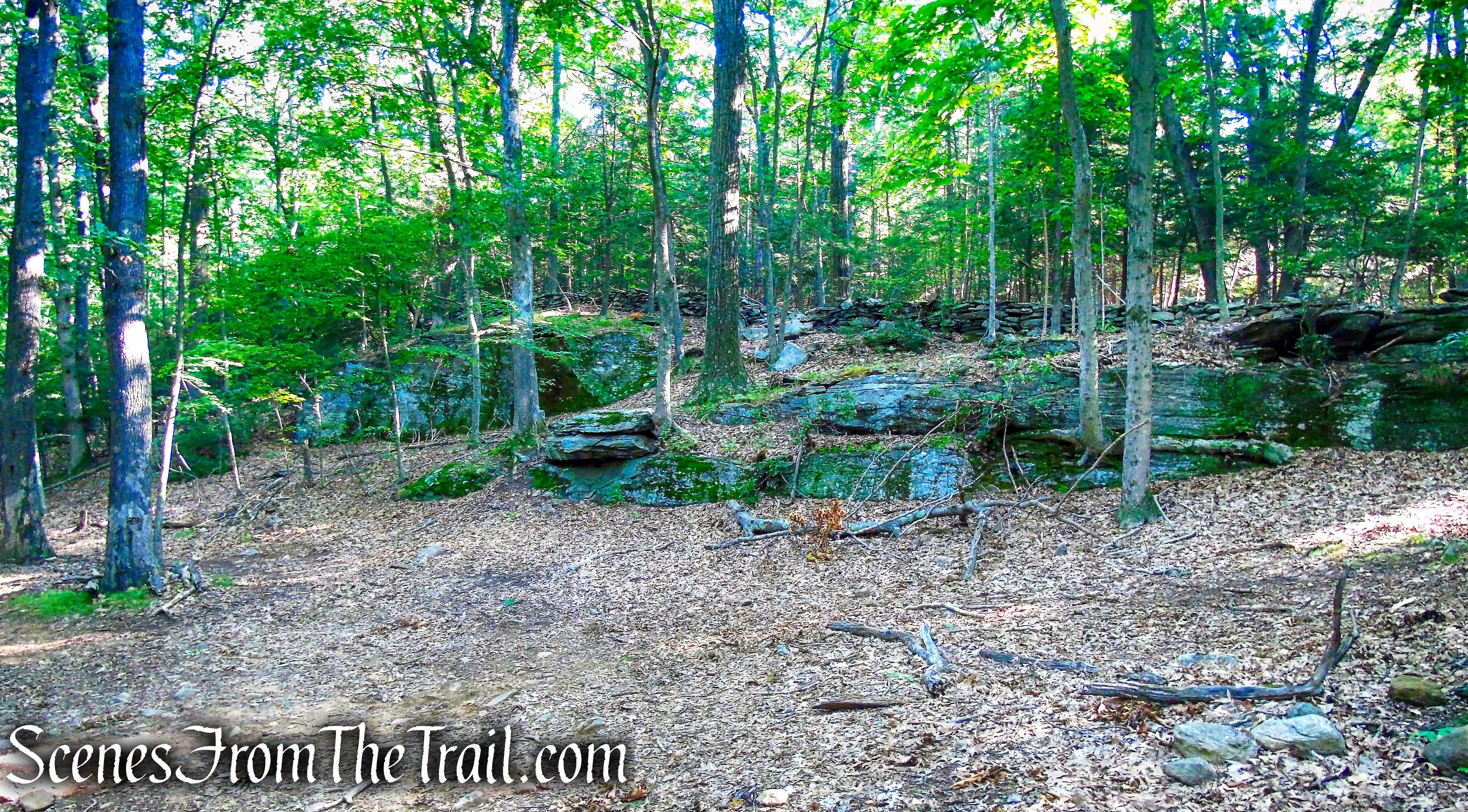 south quarry - Little-Laurel Lime Ridge Park