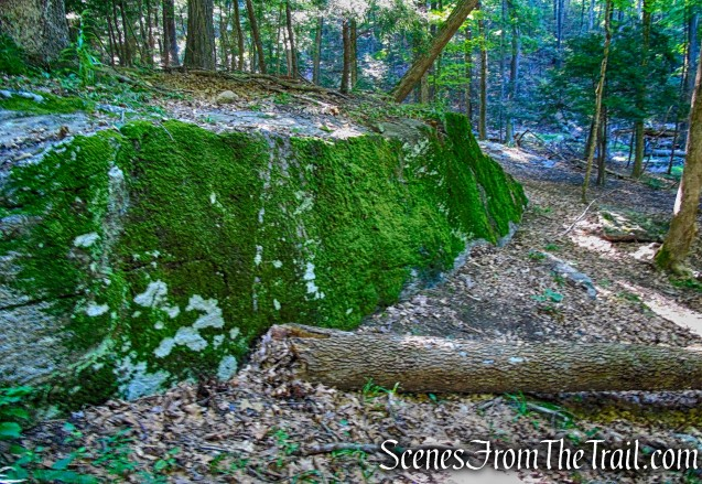 moss covered boulder - Little-Laurel Lime Ridge Park
