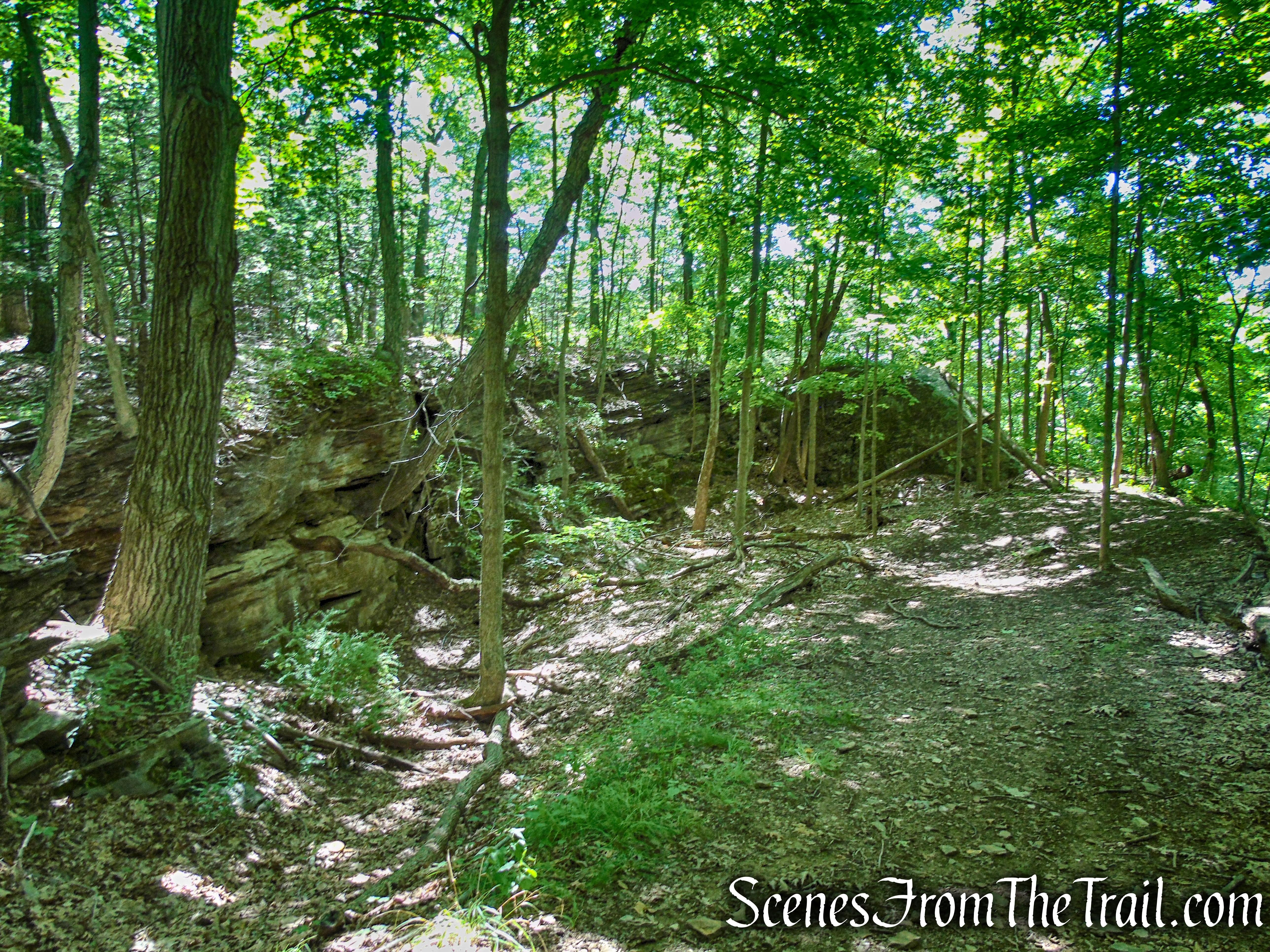 Blue Trail – Little-Laurel Lime Ridge Park
