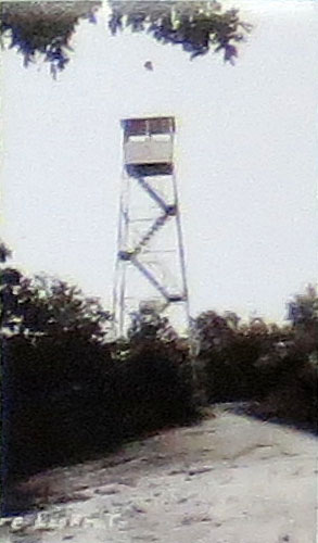 steel fire tower - Mohawk State Forest