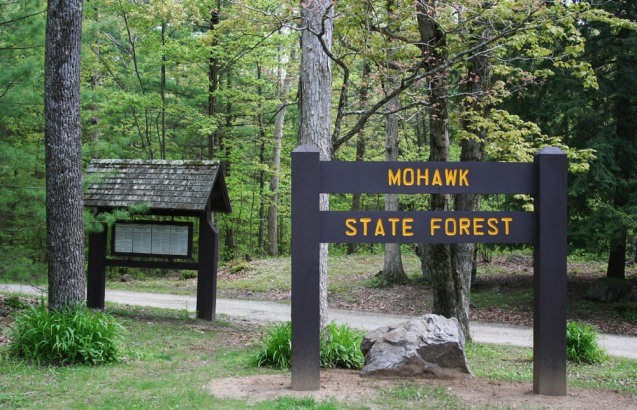 Mohawk State Forest