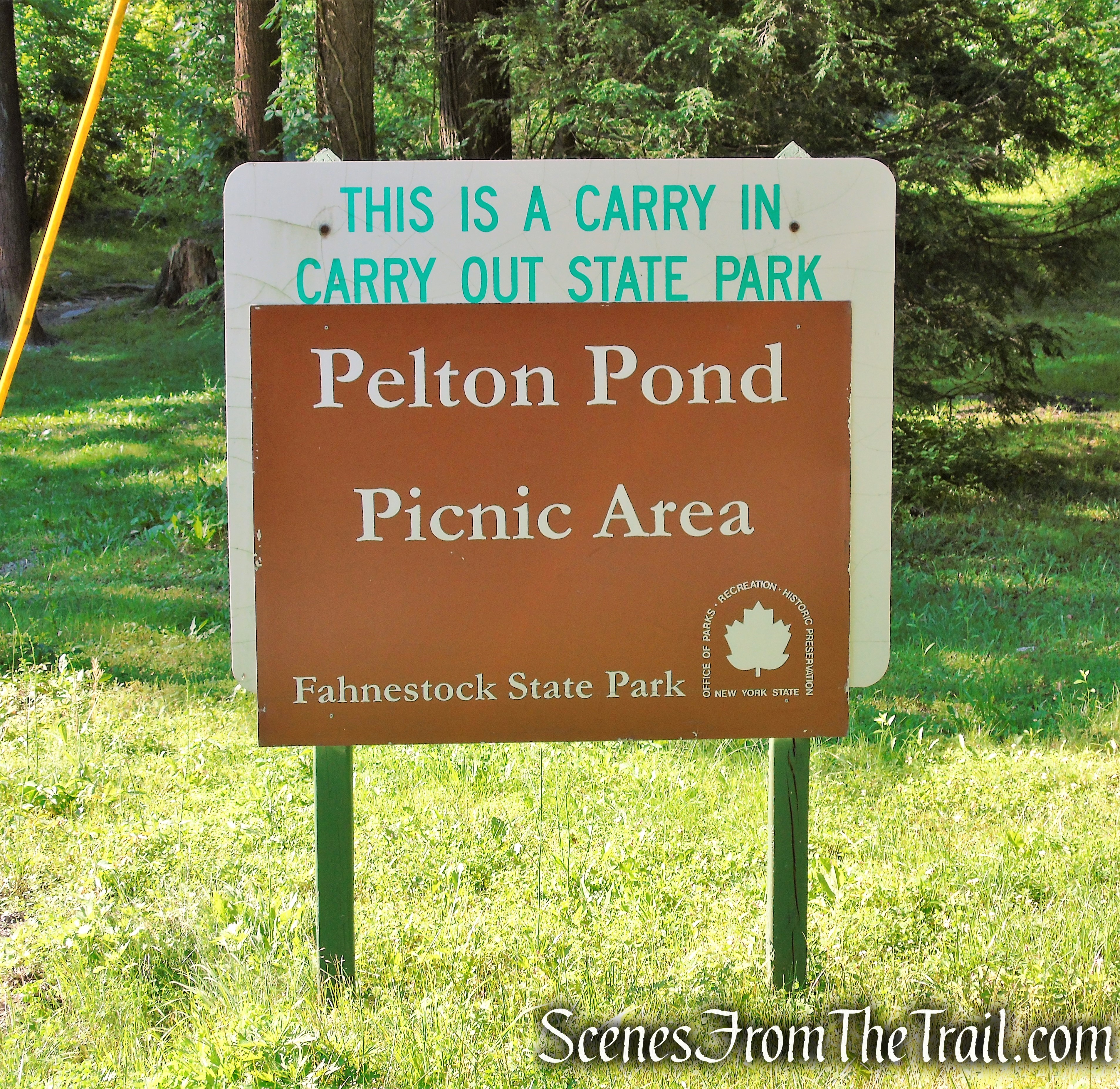 Pelton Pond Picnic Area - Fahnestock State Park