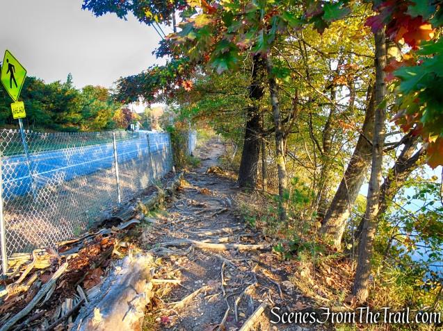 Shoreline Loop Trail - Franklin Lakes Nature Preserve