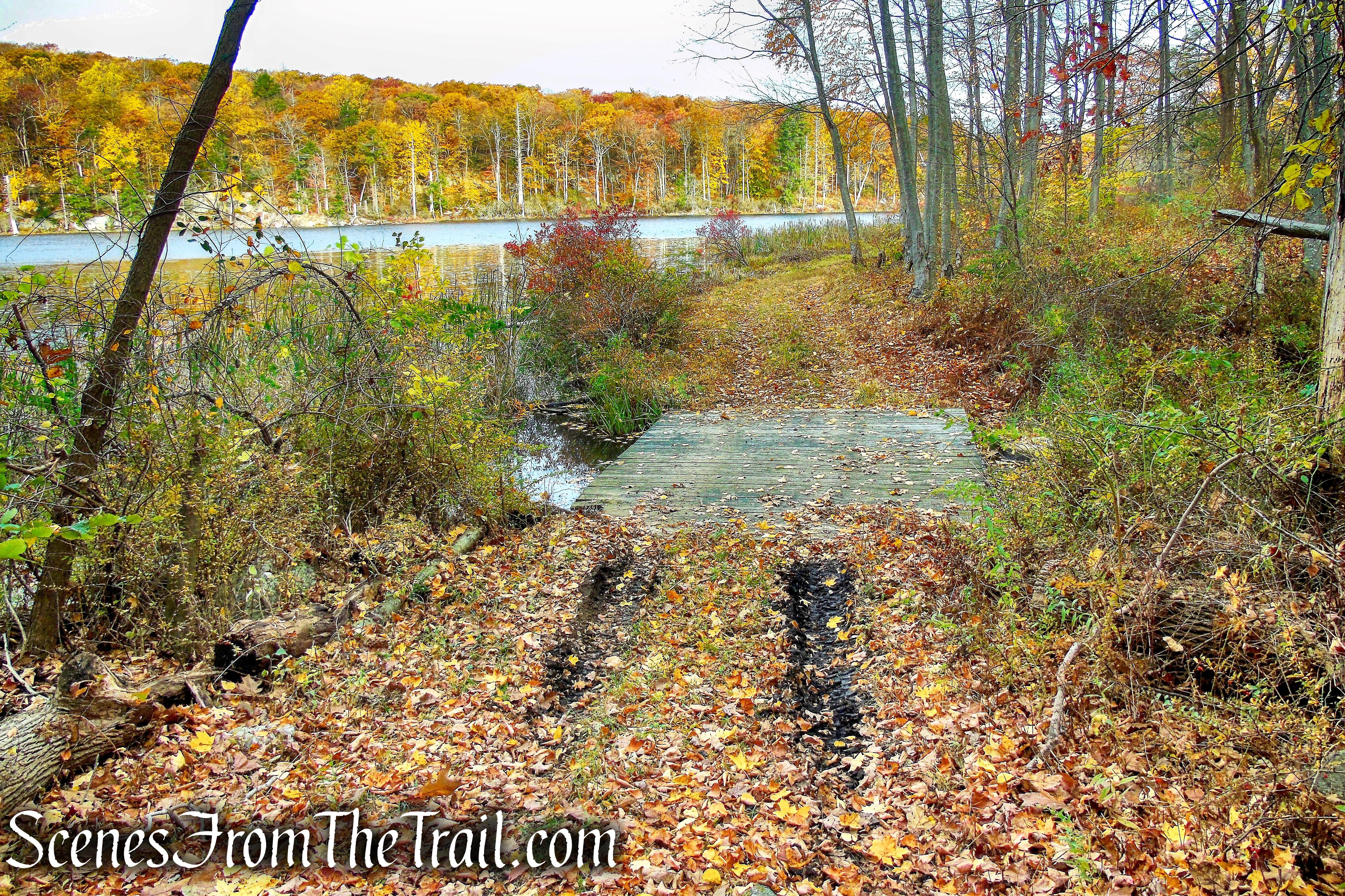 woods road - Fahnestock State Park