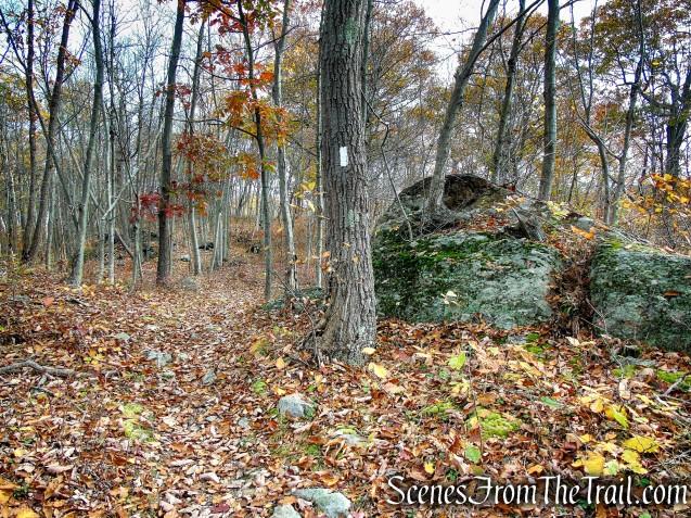 Appalachian Trail - Fahnestock State Park