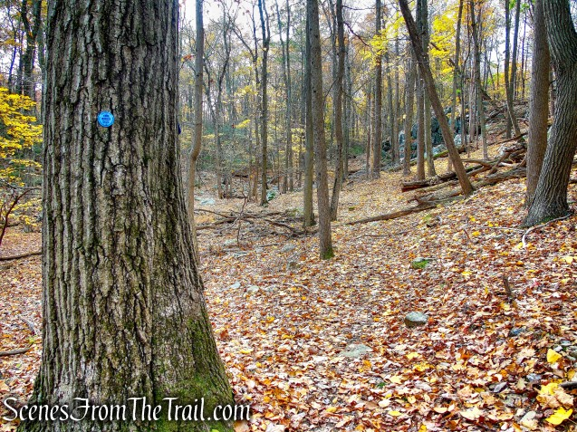 Appalachian Way - Fahnestock State Park