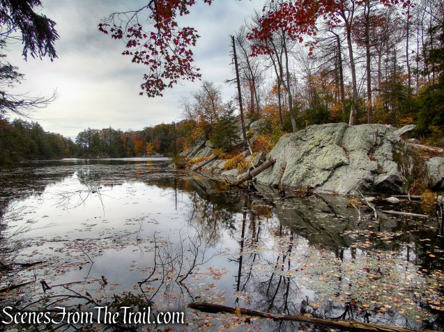 Pelton Pond - Fahnestock State Park