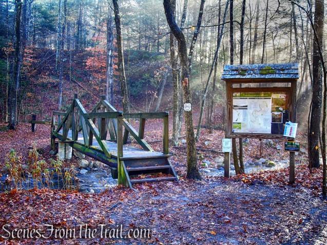 wooden footbridge over Bee Brook