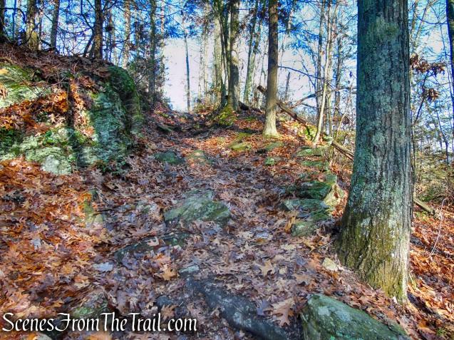 Pinnacle Trail - Hidden Valley Preserve