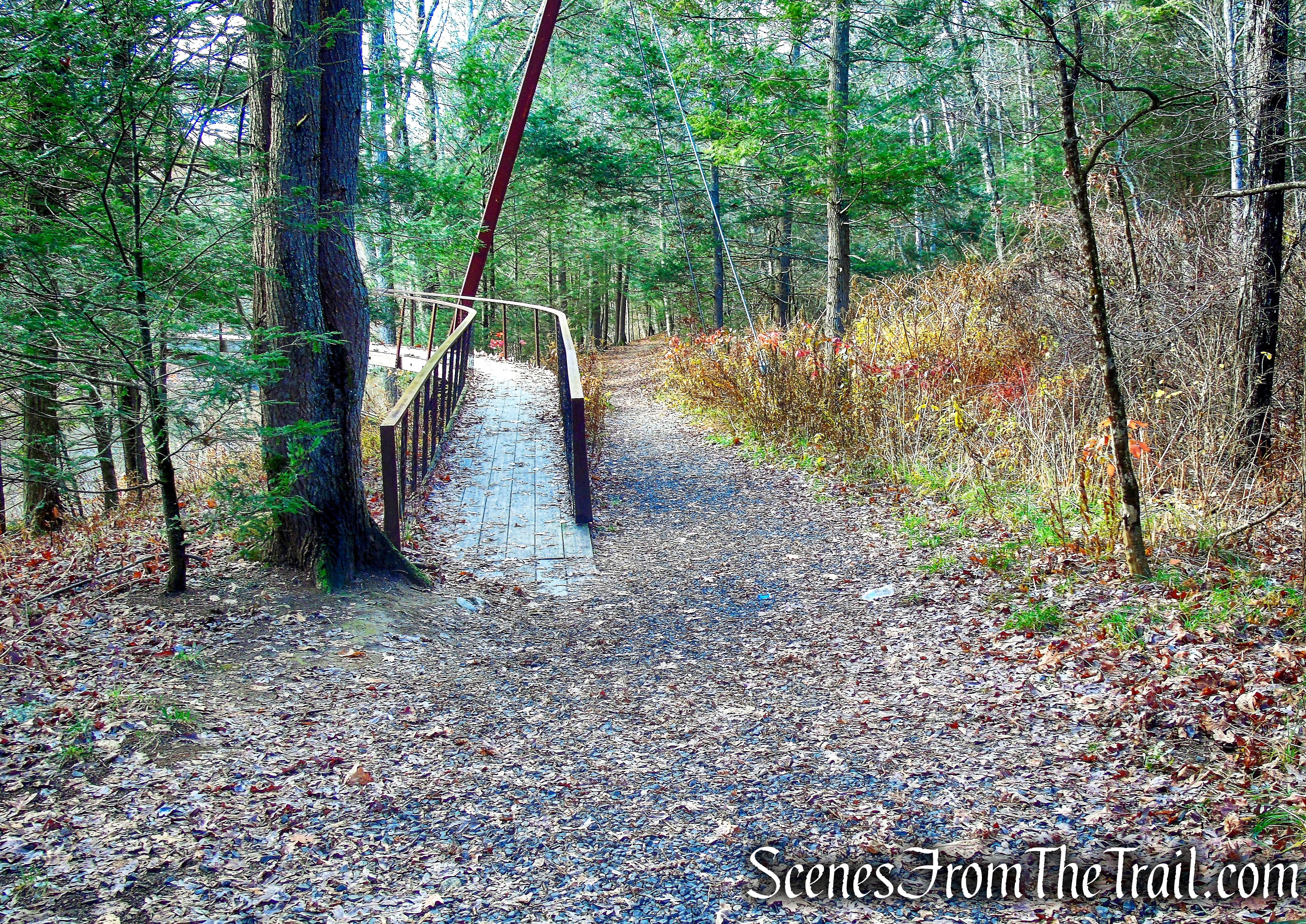 Bee Brook Loop - Hidden Valley Preserve