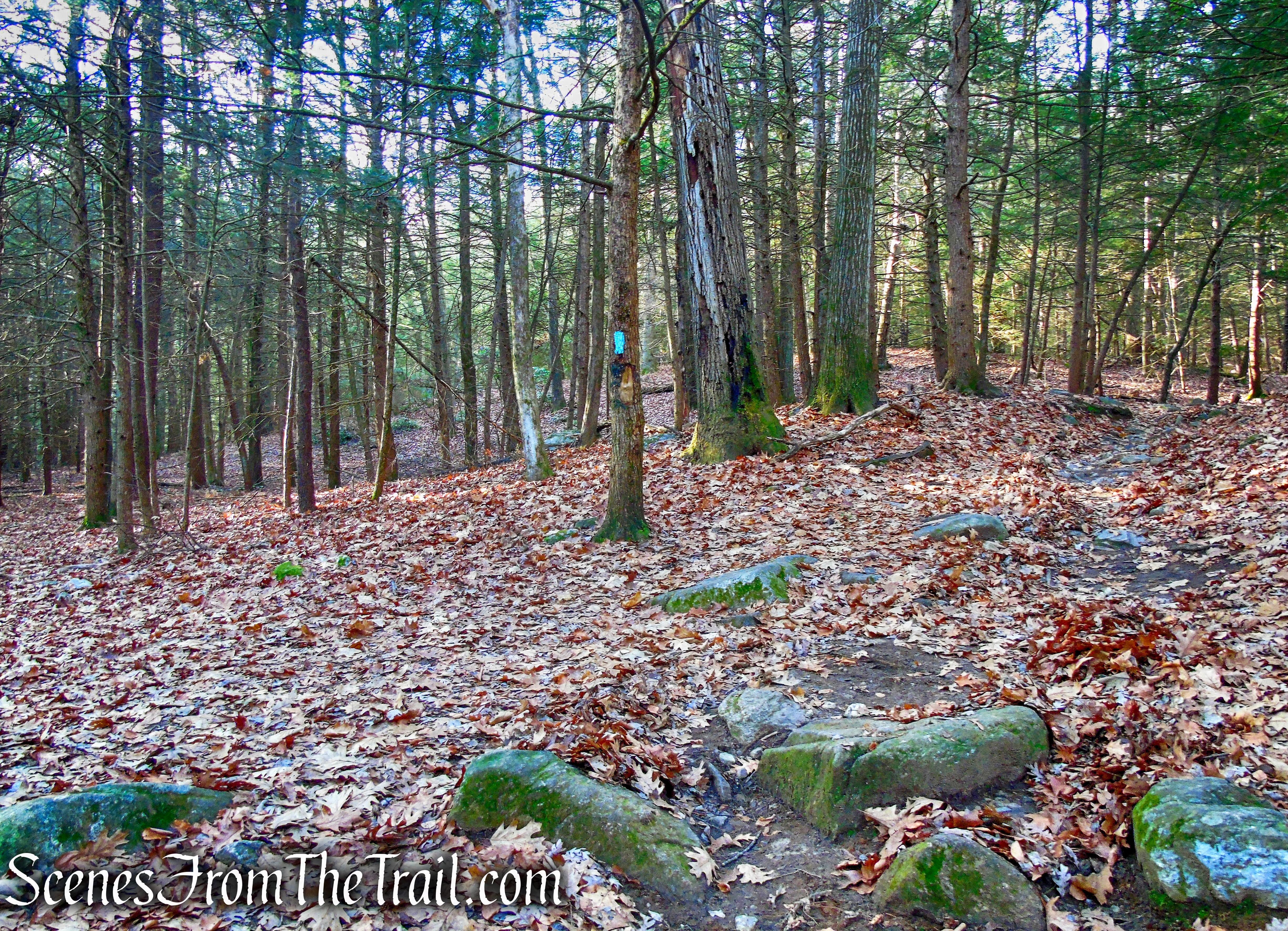 turn sharp left on Mattatuck Trail