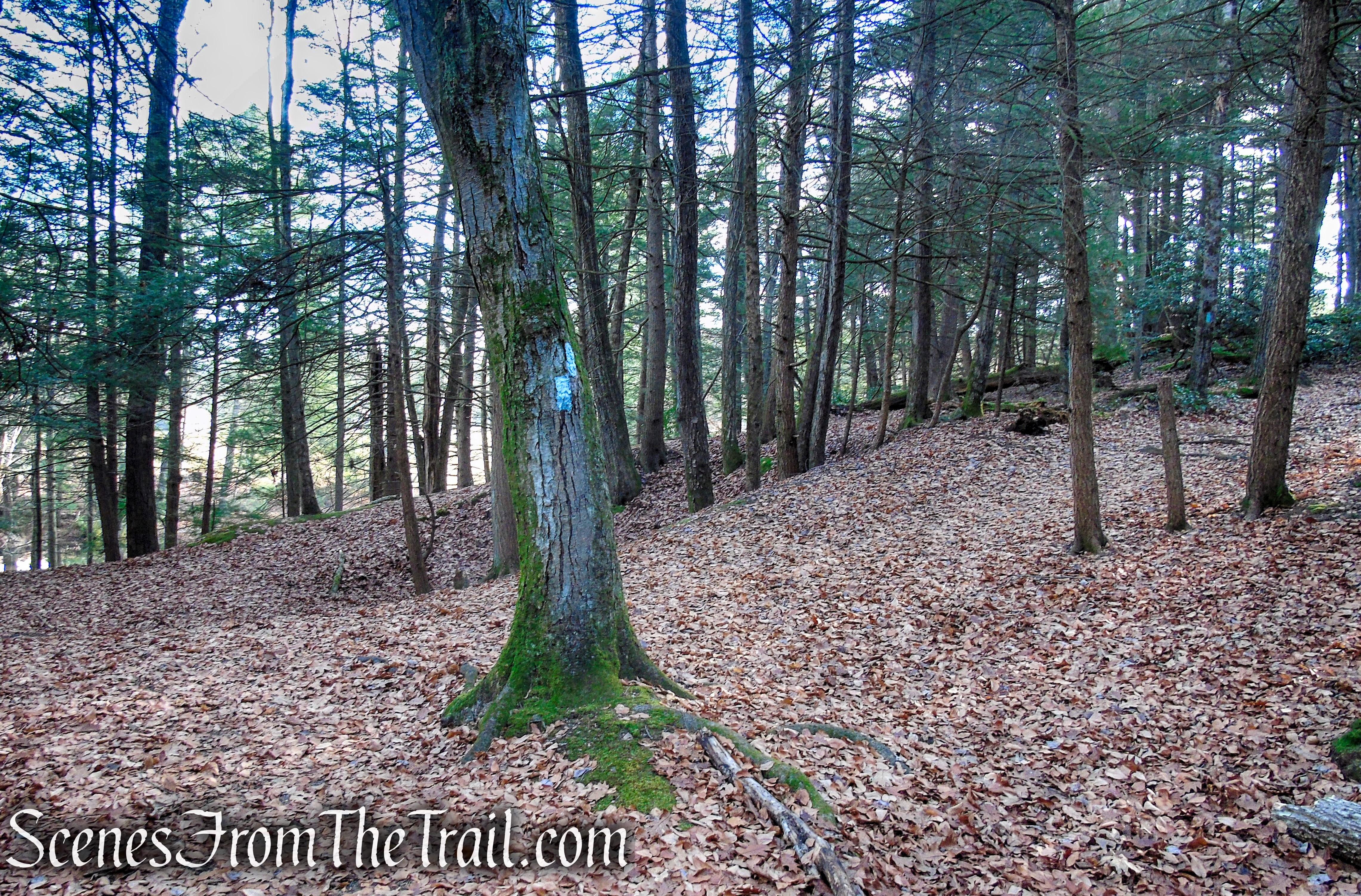Mattatuck Trail – Black Rock State Park