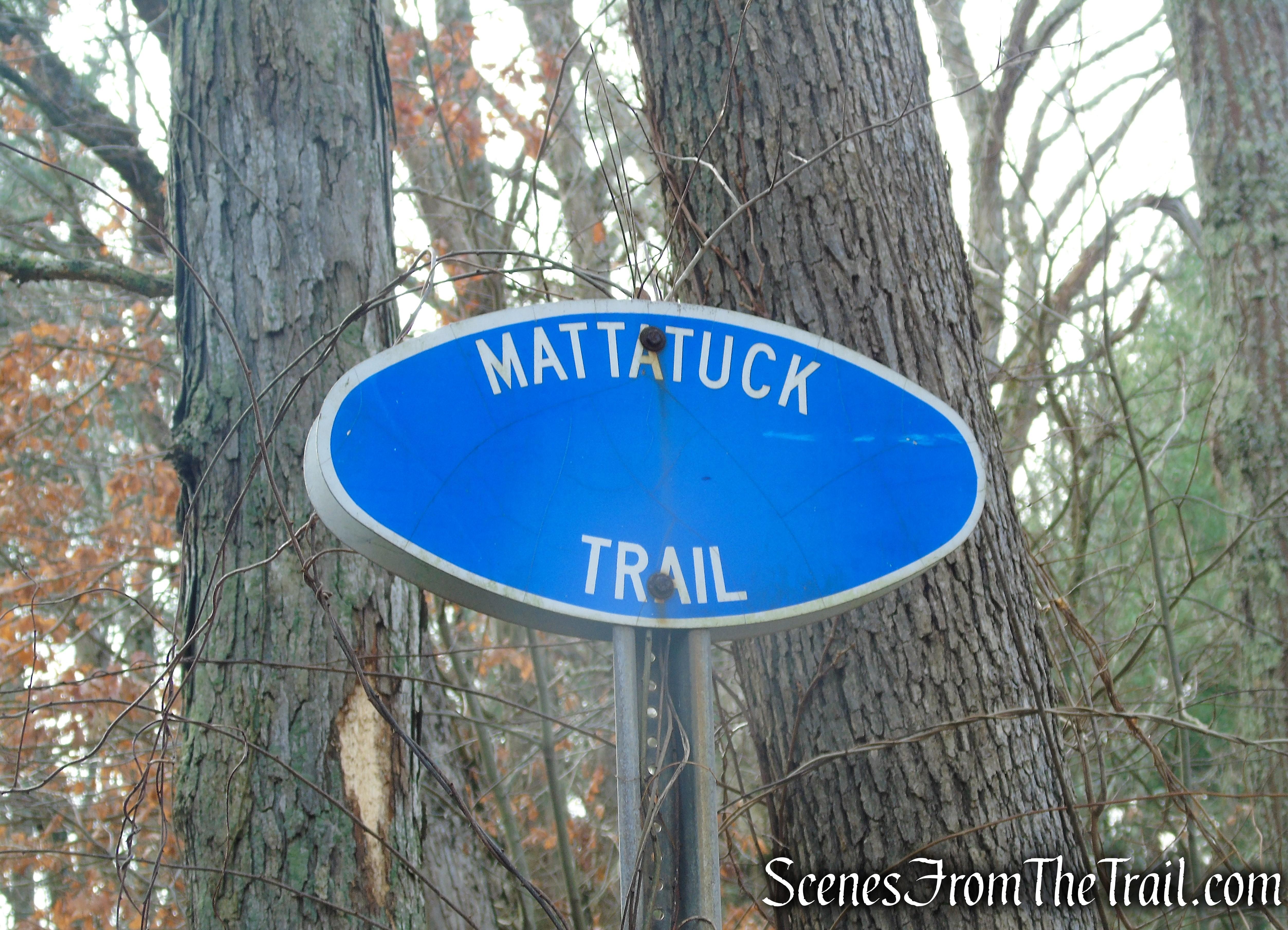 Mattatuck Trail - Mattatuck State Forest