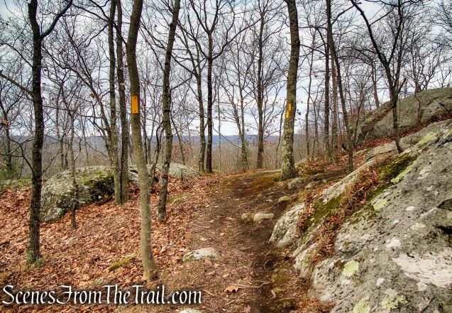 Yellow Trail - Prospect Mountain Preserve