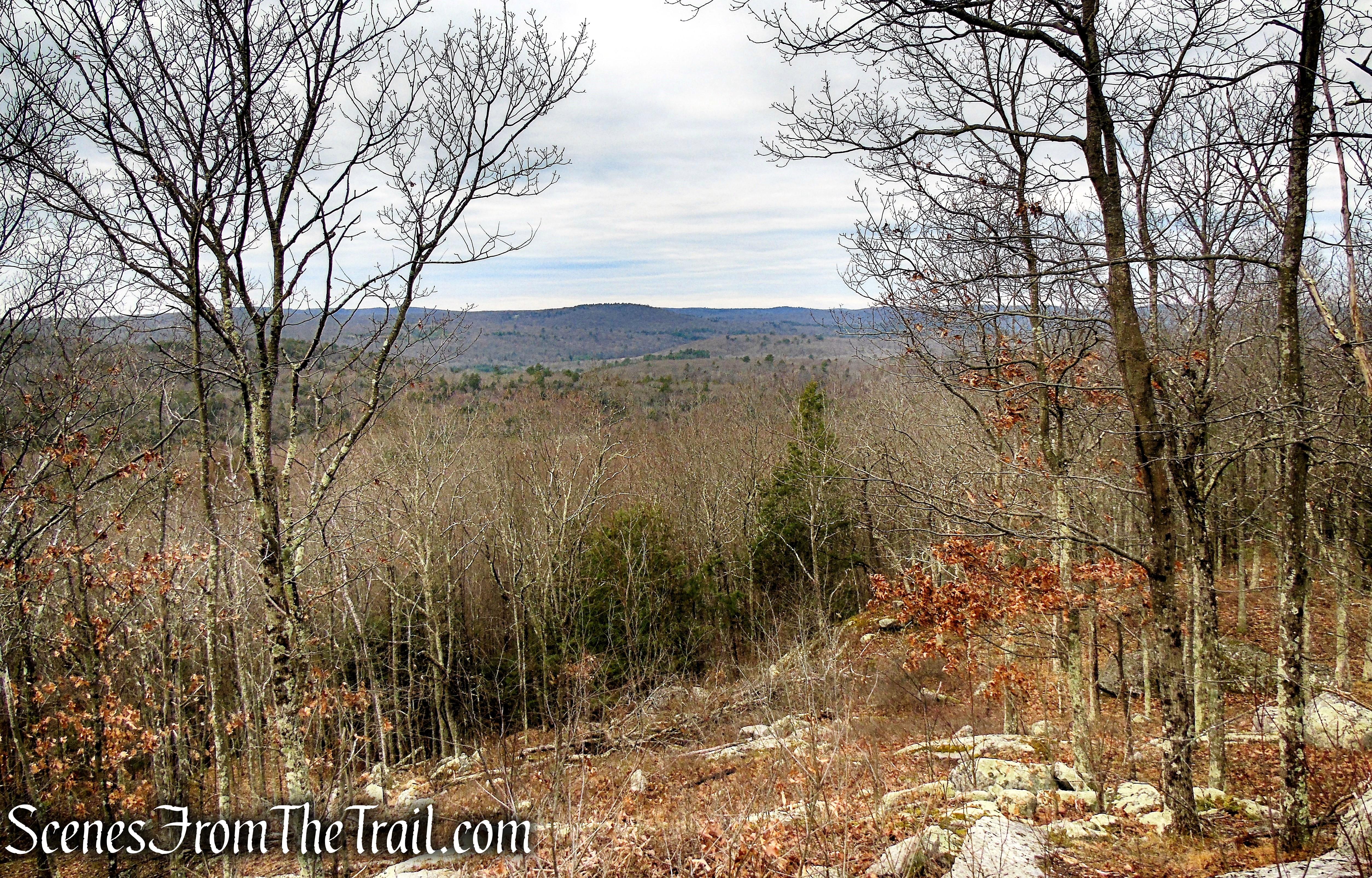 North Summit view - Prospect Mountain Preserve