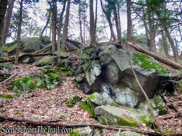 rock formations at junction of Blue/White Trails
