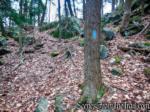 Blue Trail – Prospect Mountain Preserve