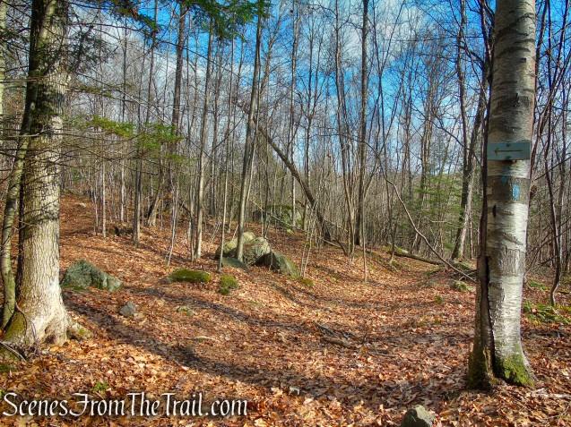 Blue Trail turns left