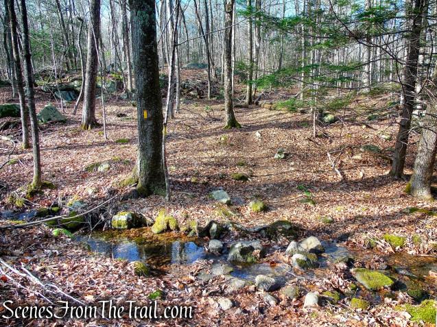 Yellow Trail – Prospect Mountain Preserve