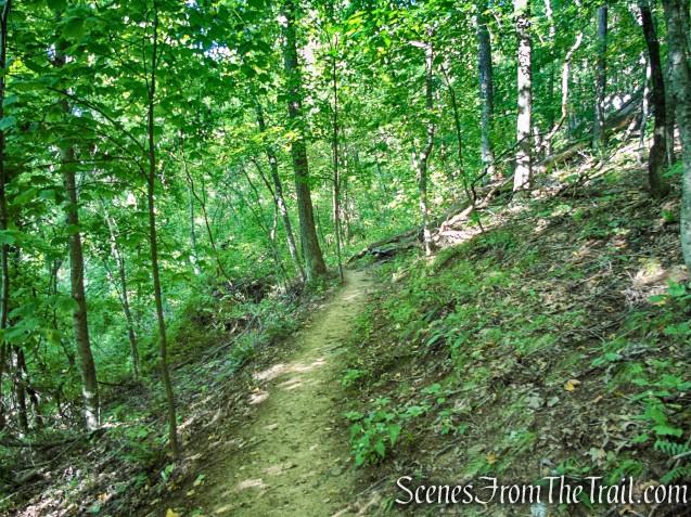 Meeker Trail - Macricostas Preserve