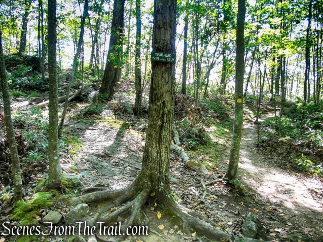 turn left on Ridgeline Trail