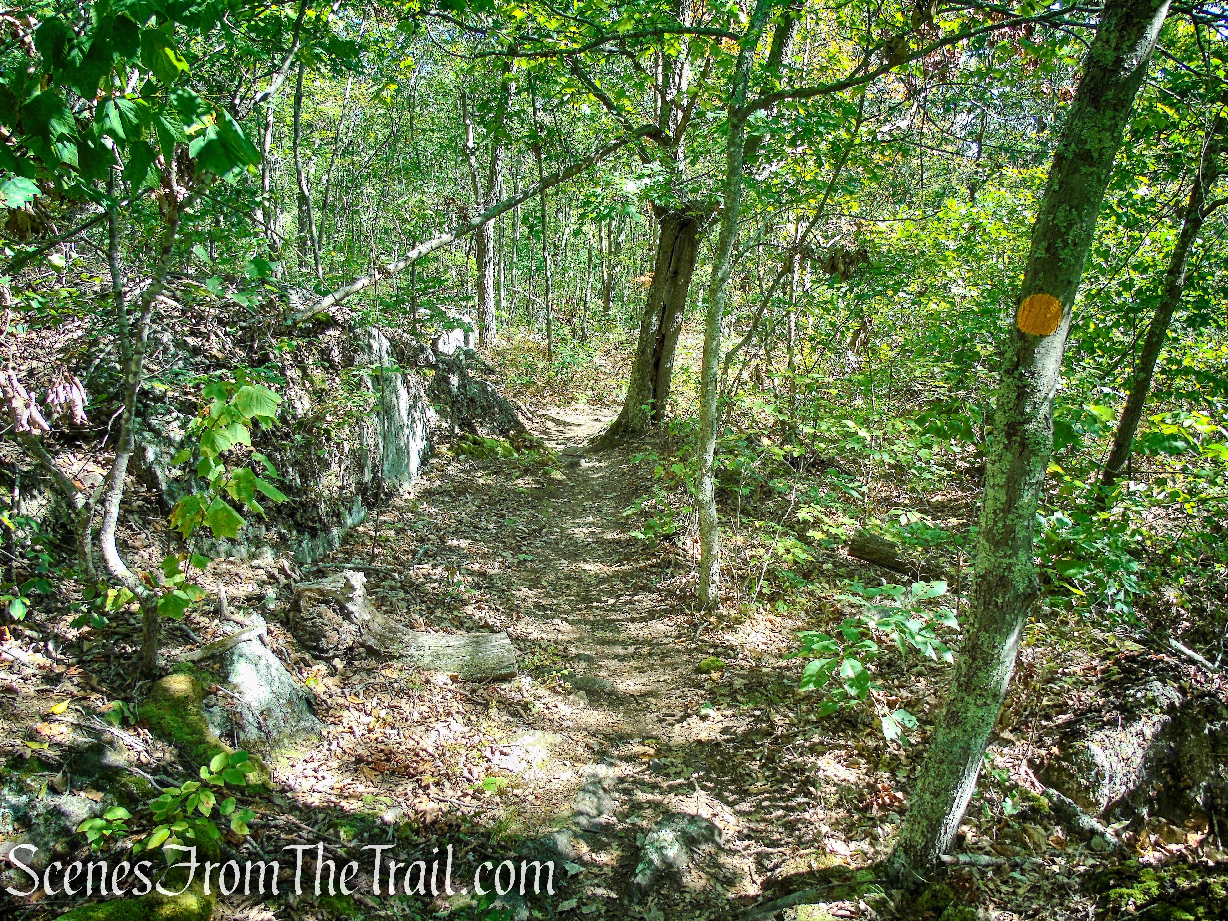Ridgeline Trail - Macricostas Preserve