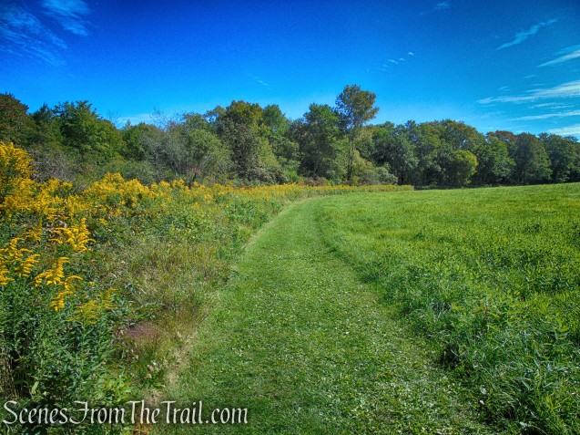 Hay Field Loop - Macricostas Preserve