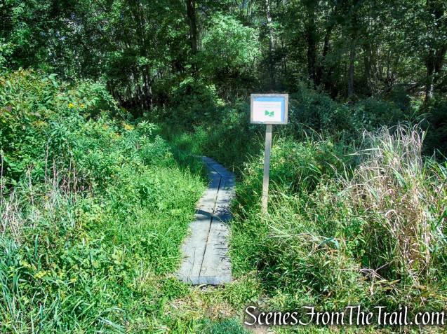 Meeker Swamp - Macricostas Preserve