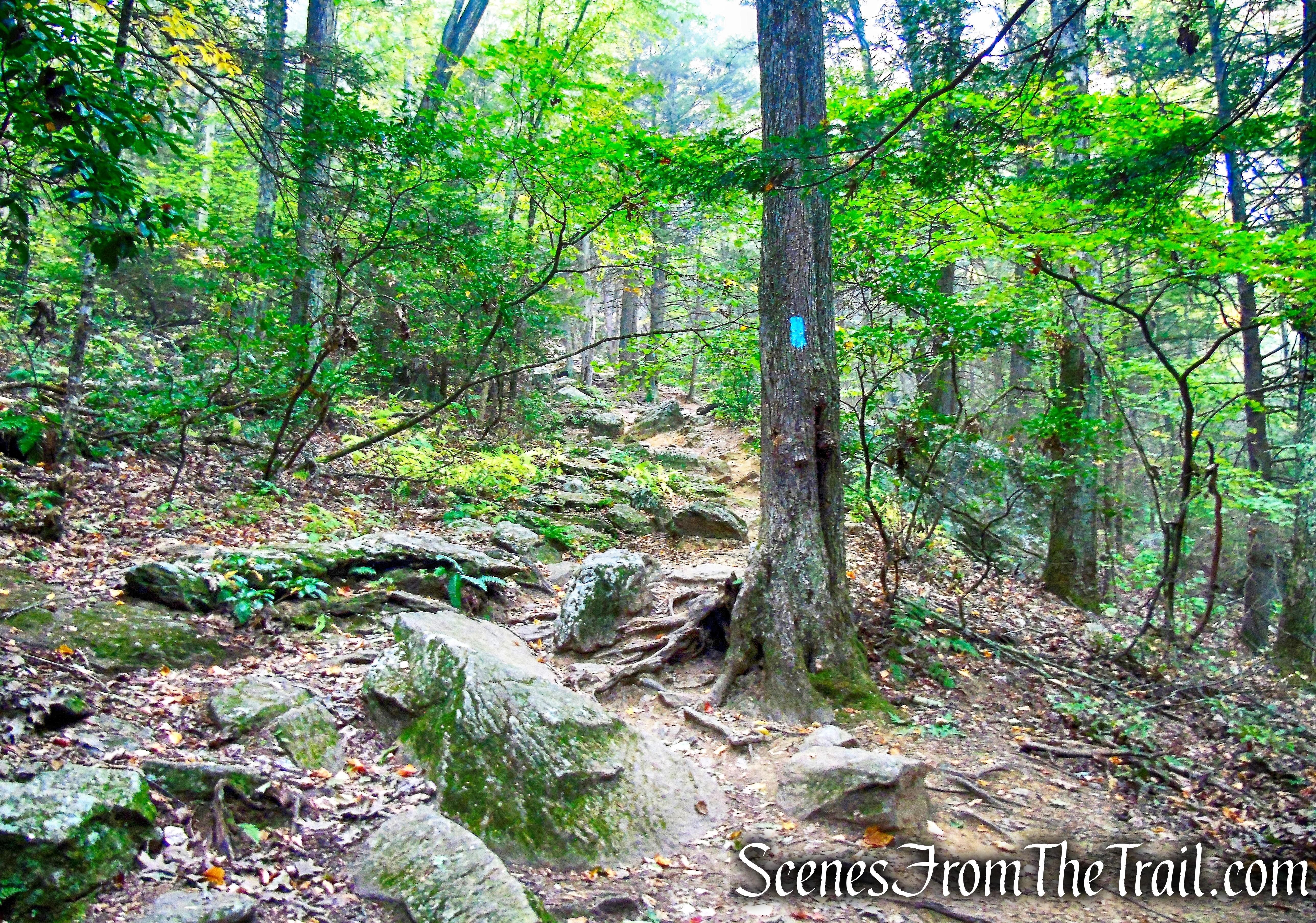 Mattatuck Trail - Black Rock State Park