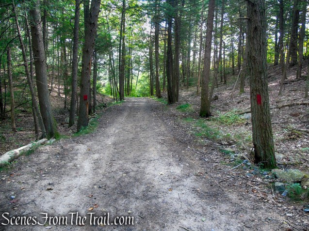Red Trail - Black Rock State Park
