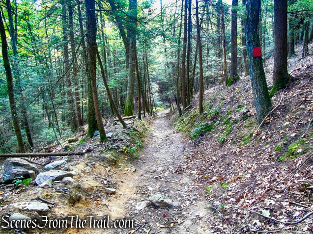 Red Trail – Black Rock State Park