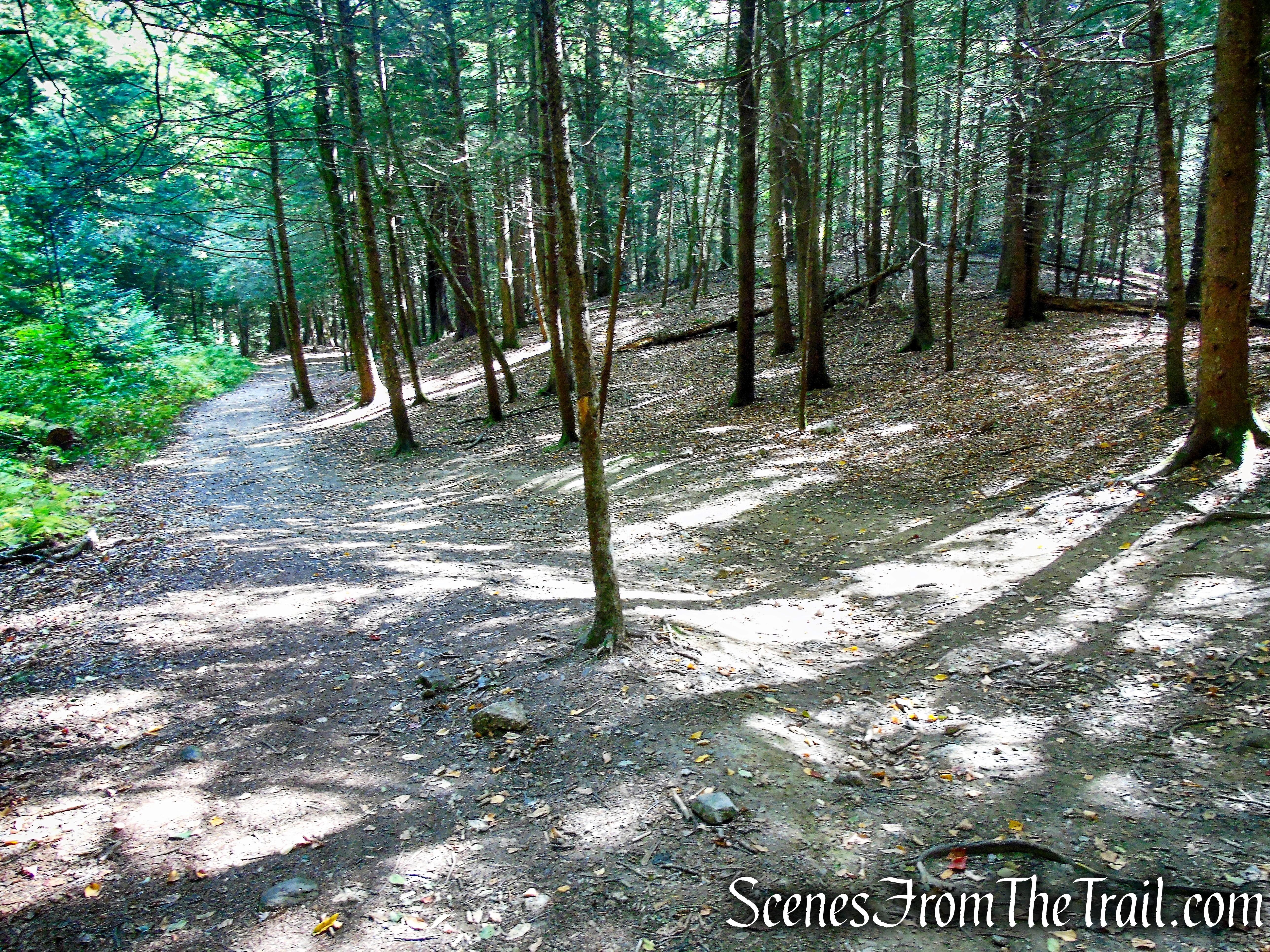 turn left on Mattatuck Trail