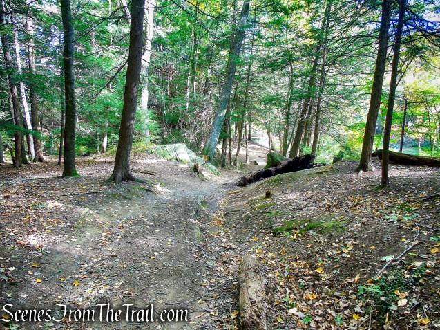turn left on woods road