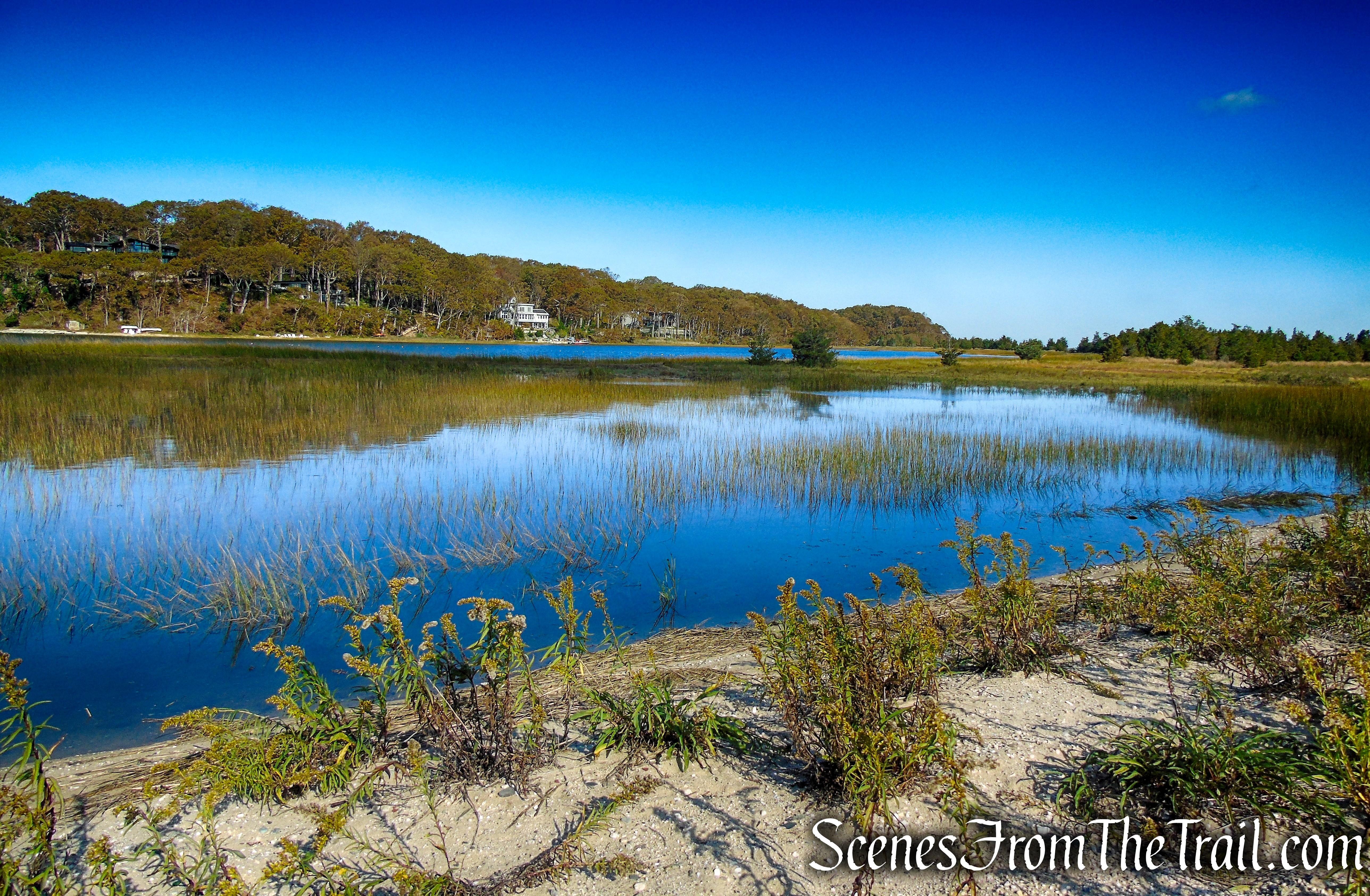 tidal flats - Lloyd Harbor